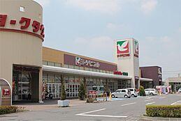 ヨークベニマル坂東店(4795m)