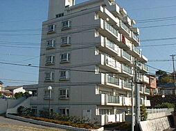 ハムステッドコート[7階]の外観
