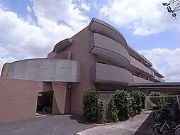 メゾンポレール[3階]の外観