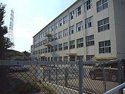 名古屋市立しまだ小学校まで530m