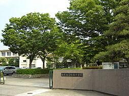 鶴城小学校 徒歩 約12分(約919m)