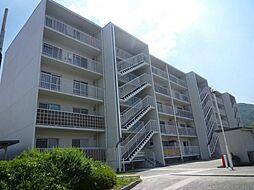 清和台センターハイツM棟[3階]の外観