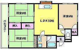 兵庫県神戸市東灘区御影塚町4丁目の賃貸マンションの間取り