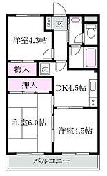 東京都杉並区上井草3丁目の賃貸マンションの間取り