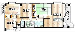 シャトレ諏訪町[6階]の間取り