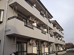 神奈川県川崎市高津区下野毛1丁目の賃貸マンションの外観