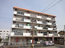 サンハイツ西ノ京[505号室]の外観