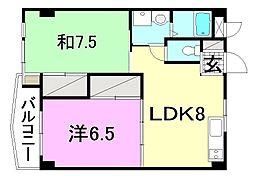 ビージョイマンション5号館[505 号室号室]の間取り