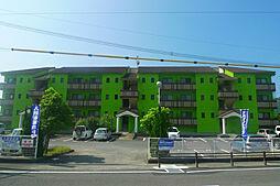 さくらマンション[3-F号室]の外観