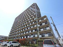 千葉県東金市田間の賃貸マンションの外観