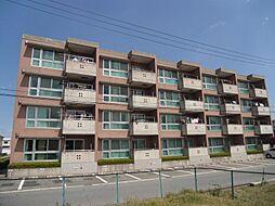 YNT第1マンション[204号室]の外観