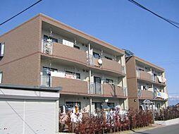長野県長野市稲田 2丁目の賃貸マンションの外観