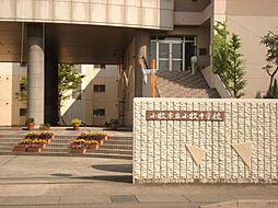 ハイツエクセル[1階]の外観