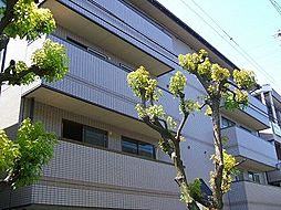 VIVI山本(ビビ山本)[3階]の外観