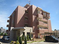 モアエクセル高石[2階]の外観