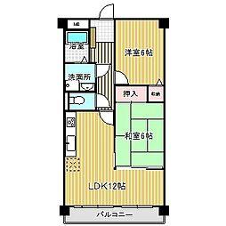愛知県名古屋市中川区万場5丁目の賃貸マンションの間取り