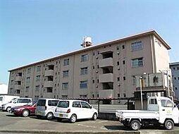 宮崎県宮崎市吉村町堂ノ後甲の賃貸アパートの外観
