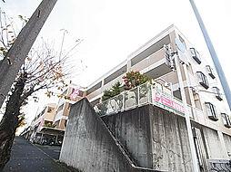 千葉県松戸市小金原4丁目の賃貸マンションの外観