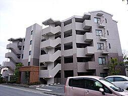 ファインヴィラ[5階]の外観