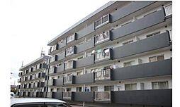 新涯マンション A棟[3階]の外観