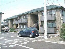 宮城県仙台市若林区今泉2丁目の賃貸アパートの外観