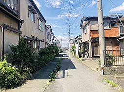 現地写真(7月撮影)