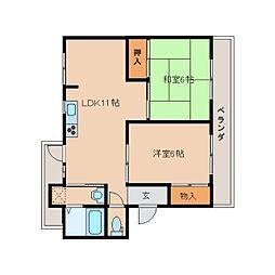 奈良県橿原市新賀町の賃貸マンションの間取り