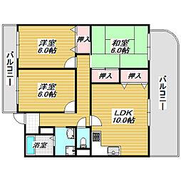 パインバレイ[7階]の間取り
