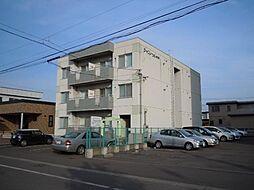 シャンノール東3条[305号室]の外観