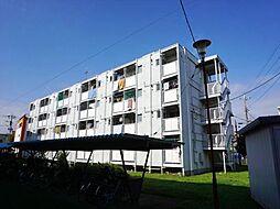 ビレッジハウス勝田4号棟[3階]の外観