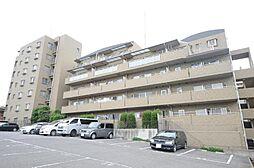 AXIS KASHIWA[7階]の外観