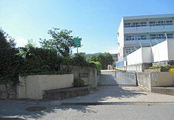 芦屋市立精道中学校(957m)