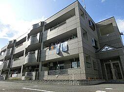 愛知県清須市春日寺廻り丁目の賃貸マンションの外観