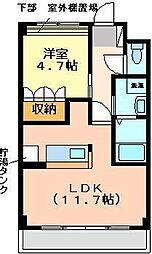 埼玉県和光市下新倉5丁目の賃貸マンションの間取り