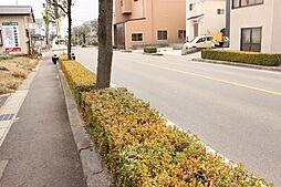 アオキスーパー乙川店まで徒歩7分(約500m)毎日のお買物にも便利です