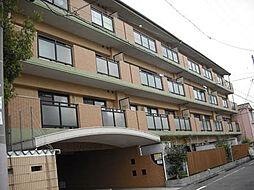 サンライフマンション[3階]の外観