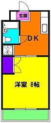 静岡県浜松市南区東町の賃貸マンションの間取り