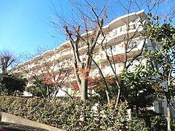 埼玉県さいたま市緑区原山2丁目の賃貸マンションの外観