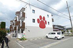 長野県長野市三本柳西2丁目の賃貸マンションの外観