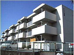 愛媛県松山市西石井2丁目の賃貸マンションの外観