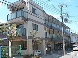 夙川ハイツAIOI[203号室]の外観