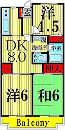 東京都足立区六月1丁目の賃貸マンションの間取り