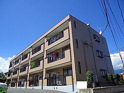 神奈川県秦野市今泉の賃貸マンションの外観