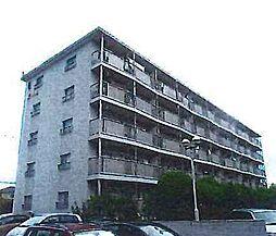 埼玉県春日部市増富の賃貸マンションの外観