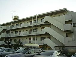 東京都羽村市五ノ神4丁目の賃貸マンションの外観
