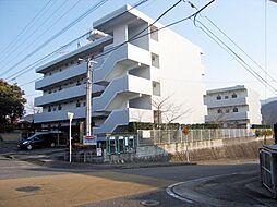 サンライズカワサキ B棟[2階]の外観