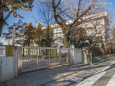 武蔵野市立第三小学校 距離800m