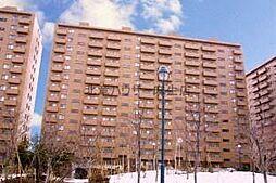SタウンB棟[5階]の外観