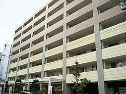 セザール平野[8階]の外観