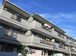 大阪府寝屋川市仁和寺本町5丁目の賃貸マンションの外観